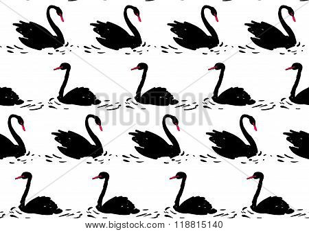 Couple of black swan. Seamless pattern.