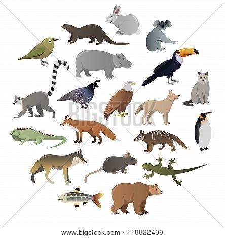 Vector image of wild animals