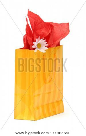 Shopping bag on white background