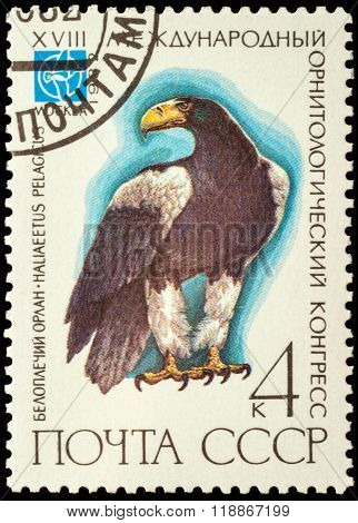Eagle On Postage Stamp