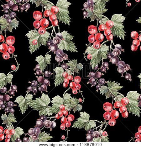 Water color pattern with berries red and black currant.
