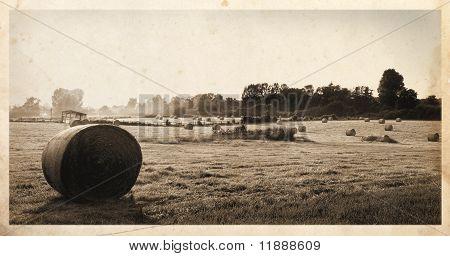Hay bales postcard