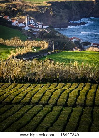 Small settlement on the Azorean Coast