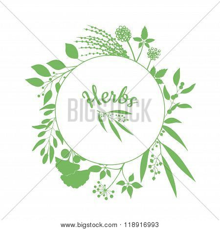 Fresh herbs store emblem. Green round frame with collection of plants. Silhouette of branches isolat