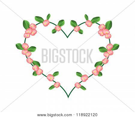 Crown Of Thorns Flowers In A Heart Shape