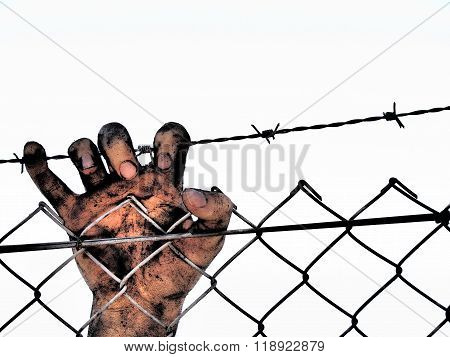 Dirty and discolored hand clinging to a steel barb wire fence