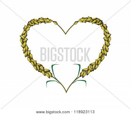 Green Color Of Millet In A Heart Shape