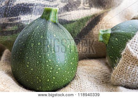 Zucchini, Courgette