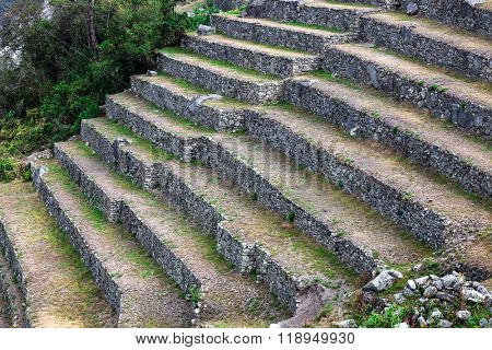 stone terraces on the mountain of Machu Picchu