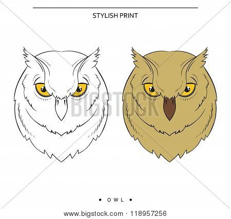 Isolated set of sketch owls. Color and monochrome bird sticker