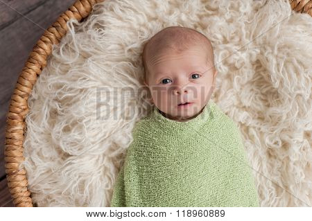 Alert Newborn Baby Boy In A Basket