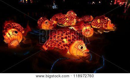 Koi Fish Handmade Chinese Lantern