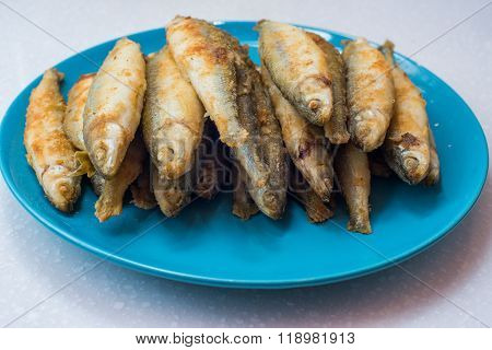 fried smelt is in blue plate on white background