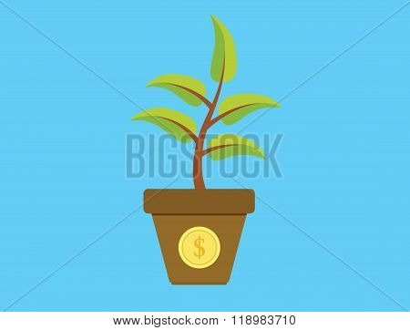 invest investment tree with money gold coins growth plant
