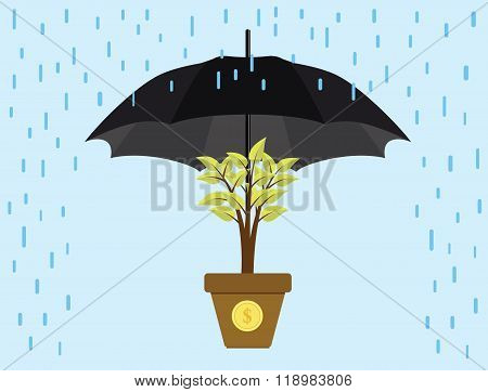 investment invest protection umbrella protect trees gold coin vector