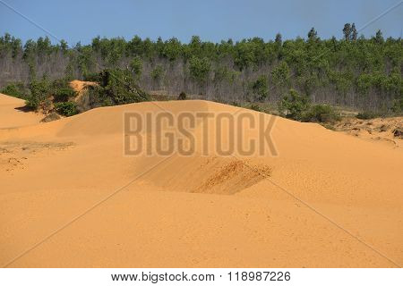 Red dunes in the vicinity of Mui Ne