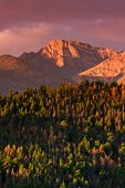 stock photo of rocky-mountains  - A beautiful Autumn sunrise over the forest and Colorado - JPG