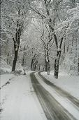 Route In Winter