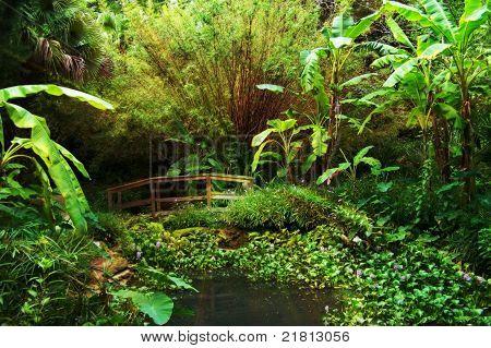 Jungle Interlude