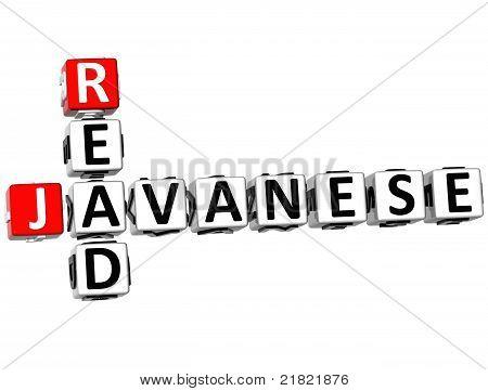 3D Read Javanese Crossword