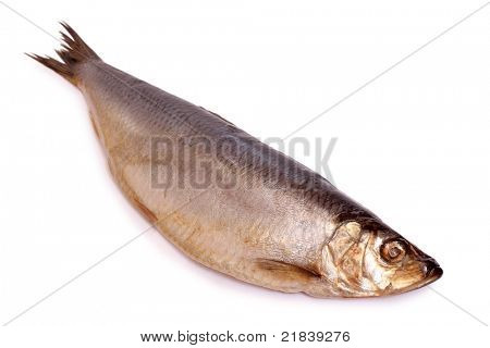Color photo of a herring on a white background