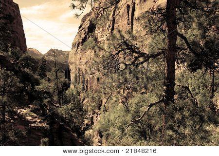 Southwest Canyon View