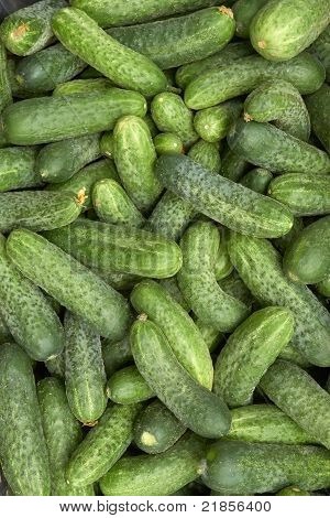 Heap Of Green Cucumbers