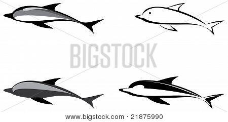 Dolphin - Vector Illustration