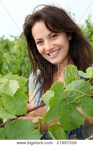 Portrait of smiling winegrower in vineyard