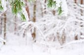 Christmas Framework With Snow Isolated On White Background poster