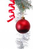 picture of christmas ornament  - Red Christmas ornament on white background with christmas tree branch - JPG