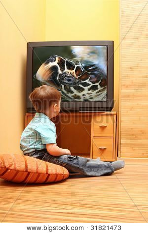 Rear view of little boy sitting on the floor and watching cinema on TV at home. TV screen -