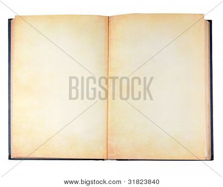 Ancient vintage book