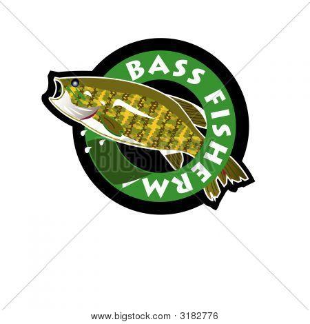Big Bass.