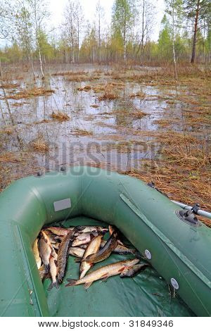 river fish in rubber boat on coast lake