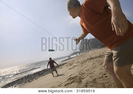 Two Friends Throwing on Beach