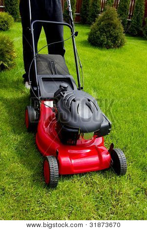 Lawn mower in the garden