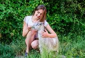 Woman Play Cute Goat. Veterinarian Occupation. Treating Animals At Farm. United With Nature. Animals poster
