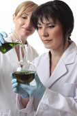 image of cytology  - Two female chemists at work in the laboratory - JPG