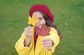Child With Autumn Maple Leaves Walk. Autumn Coziness Is Just Around. Little Girl Excited About Autum poster