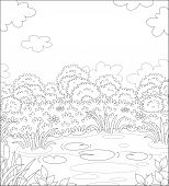 Small Picturesque Pond On A Meadow With Flowers On A Pretty Summer Day, Black And White Outline Vect poster