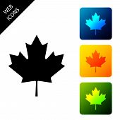 Canadian Maple Leaf Icon Isolated On White Background. Canada Symbol Maple Leaf. Set Icons Colorful  poster