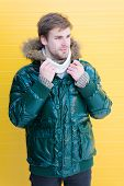 Man Bearded Hipster Wear Warm Jacket With Fur Yellow Background. Guy Wear Warm Jacket With Hood. Fee poster