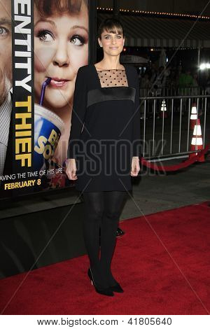 LOS ANGELES - FEB 4: Amanda Peet at the Premiere Of Universal Pictures' 'Identity Theft' on February 4, 2013 in Los Angeles, California
