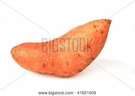 Sweet Potato Or Batata (Ipomoea batatas)