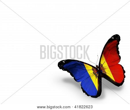 Moldavian Flag Butterfly, Isolated On White Background