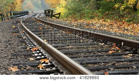 Railroad Tracks During Autumn
