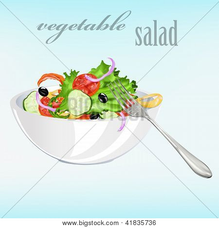 Fresh vegetarian vegetable salad