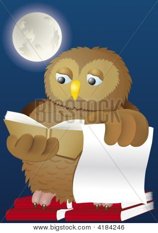 Wise Owl Studying Books In The Moon Shine