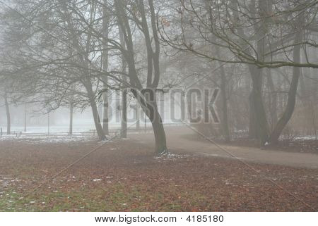 Foggy Lane On An Early Winter Day